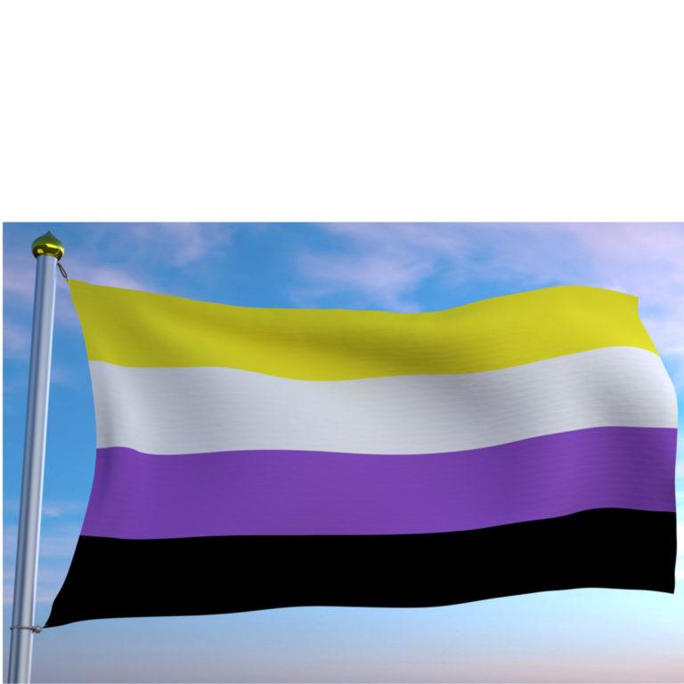 nicht binäre Flagge zu gleichen Teilen von oben nach unten gelb, weiß, lila, schwarz. Die Flagge am FAhnenmast weht vor einem blauen Himmel